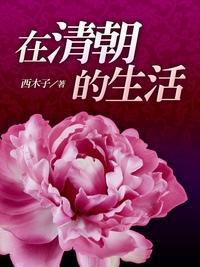 在清朝的生活. 卷四