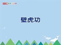 壁虎功 [有聲書]
