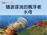 隨波逐流的飄浮者 [有聲書]:水母