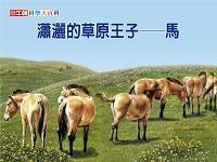 瀟灑的草原王子 [有聲書]:馬