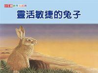 靈活敏捷的兔子 [有聲書]