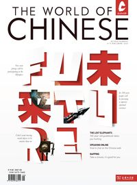 The world of Chinese [2011 ISSUE 3]:The Future