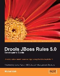 Drools JBoss Rules 5.0 Developer