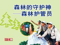 森林的守護神 [有聲書]:森林護管員