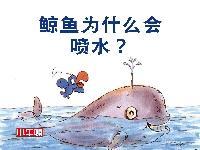 鯨魚為什麼會噴水? [有聲書]