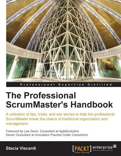 The Professional ScrumMaster