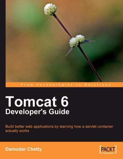 Tomcat 6 Developer
