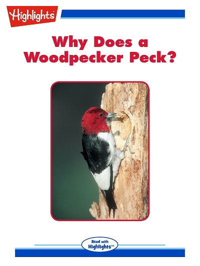 Why does a woodpecker peck? [有聲書]