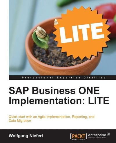 SAP Business ONE Implementation:LITE