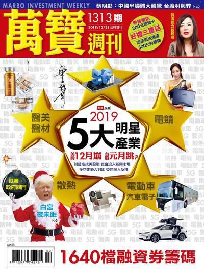 萬寶週刊 2018/12/28 [第1313期]:2019 5大明星產業