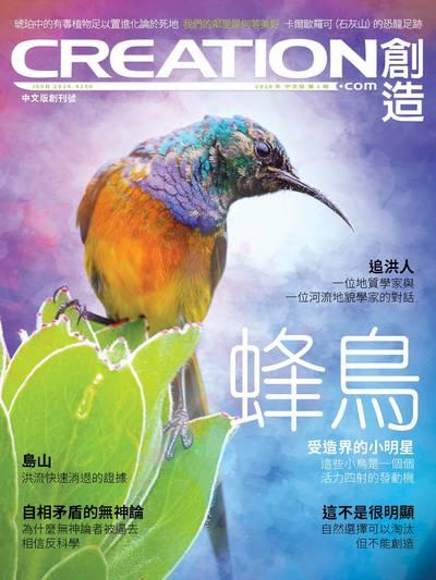 創造雜誌 [2018年第1期]:蜂鳥