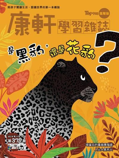 Top945康軒學習雜誌 [進階版] [第377期]:是黑豹,還是花豹?