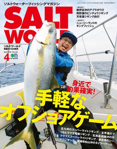 Salt world [April 2019 Vol.135]:手軽なオフショアゲーム