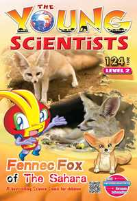 The Young Scientists Level 2 [第124期]:Fennec fox of the Sahara