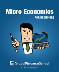 Microeconomics for beginners