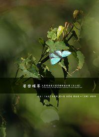 層巒蝶翠:太魯閣國家公園賞蝶按圖索驥, 高山篇