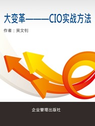 大變革:CIO實戰方法