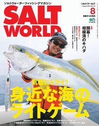 Salt world [Auguest 2016 Vol.119]:身近な海のライトゲーム