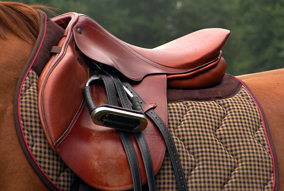 Red saddle on the brown horse back